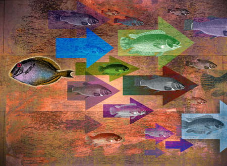 Montage of arrows, school of fish and lone fish traveling in different direction