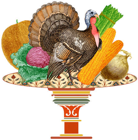 Turkey on plate with vegetables