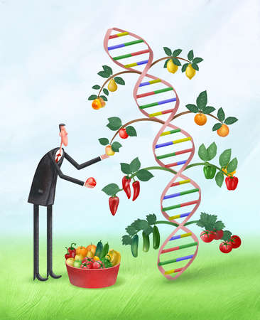 Man harvesting fruits and vegetables from a DNA strand
