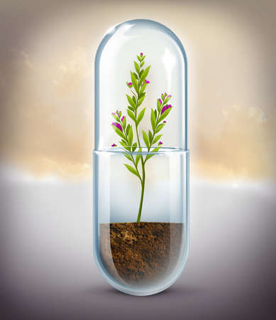 Plant growing in capsule representing natural medicine