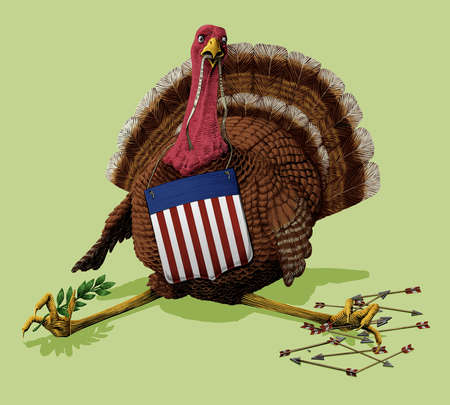 Turkey holding america flag