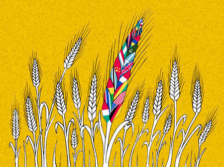 Field of wheat with one head made of international flags