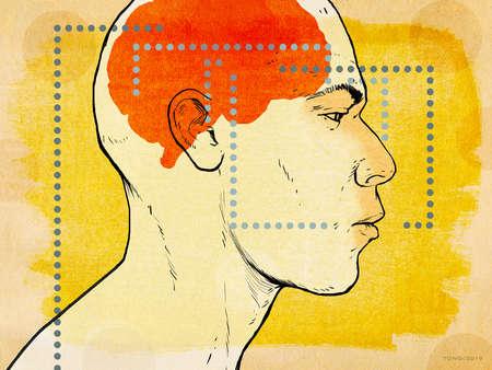 Brain Paths
