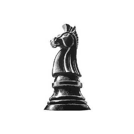 Image 58262 Caption Chess Piece Knight