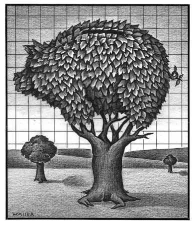 Piggy Bank Tree