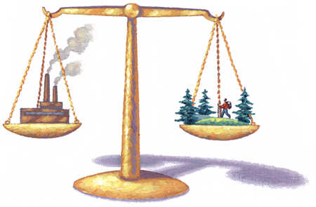 Scale Of The Environment