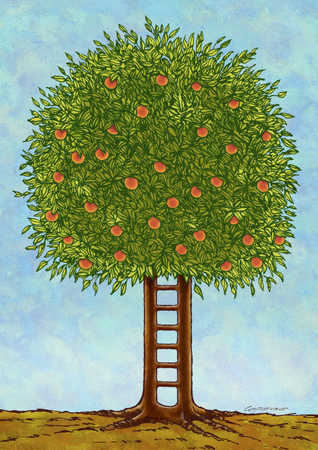 Tree Trunk Ladder