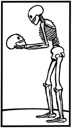 Skeleton looking at a skull