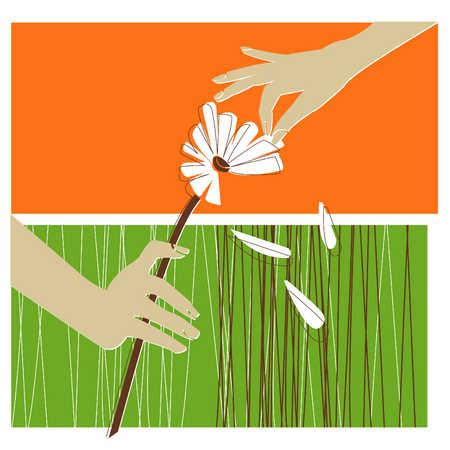 Hands Plucking Petals From A Flower