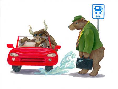 Bull driving car through puddle splashing bear
