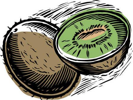 Kiwi fruit, cross-section, close-up