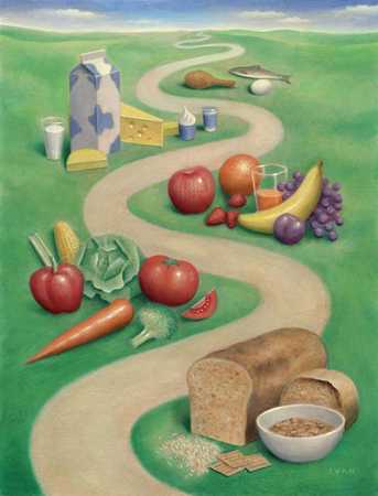 Path of healthy foods
