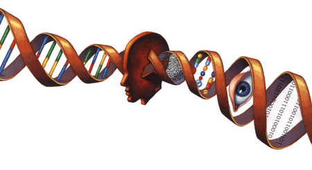 Head with DNA double helix through middle