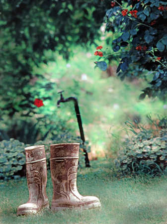 Dirty gumboots, Wellington boots, garden and water tap