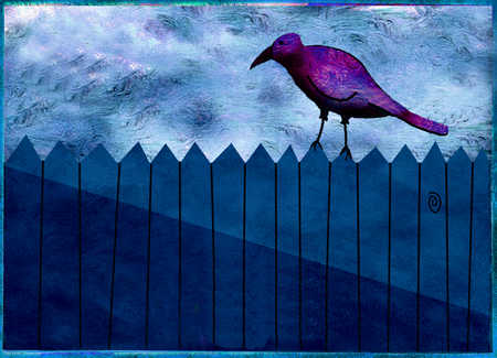 Bird standing on fence