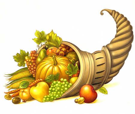 Cornucopia of fruit and vegetables
