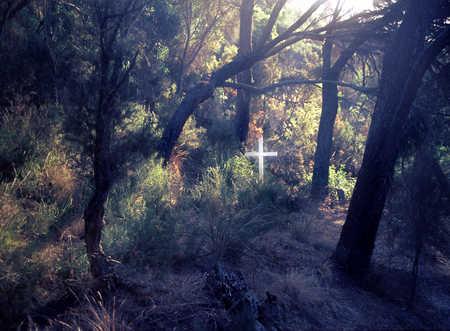 Cross in cemetery in forest