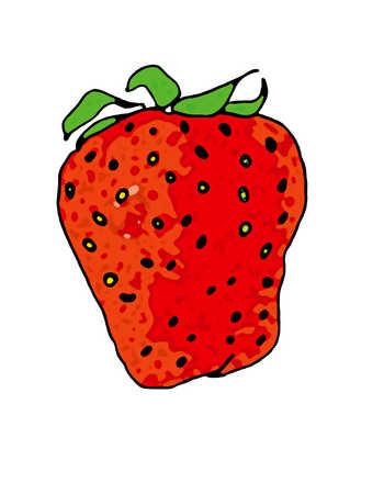 Illustration of strawberry
