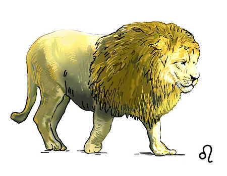 Stock Illustration  Illustration of Leo lion