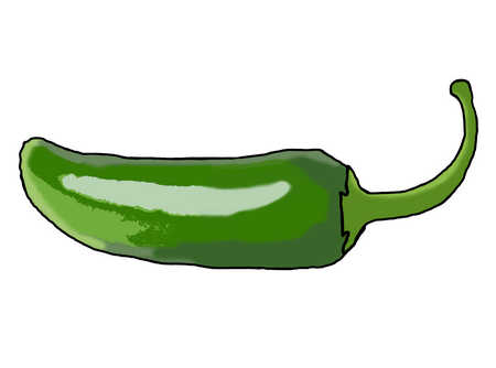 Illustration of green chili pepper