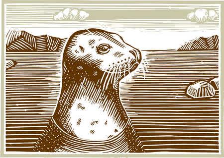 Illustration of seal
