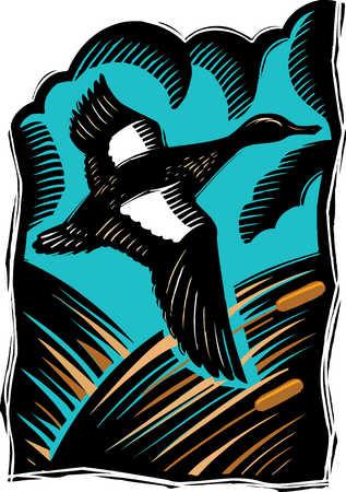 Illustration of duck flying