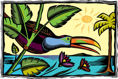Illustration of toucan and tropical beach