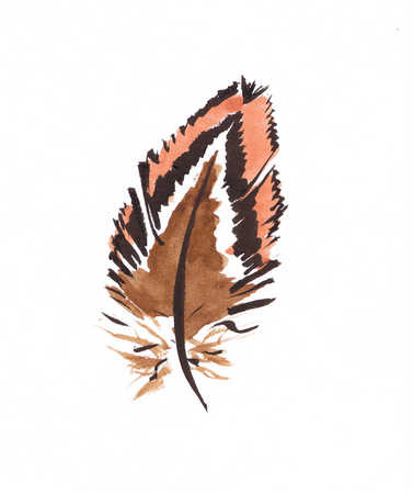 Illustration of brown and orange feather
