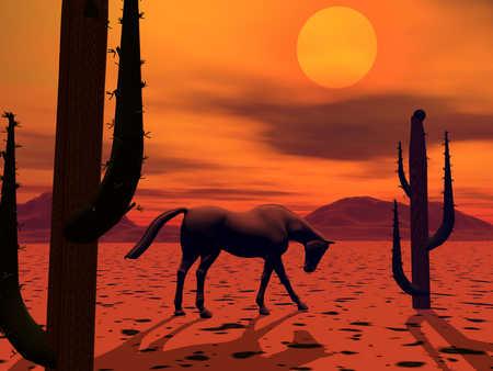 Horse standing in desert