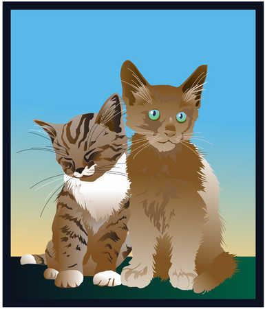 Illustration of two kittens