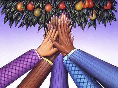 Ethnically diverse hands holding up fruit in tree