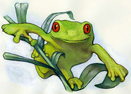 A drawing of a red eyed frog