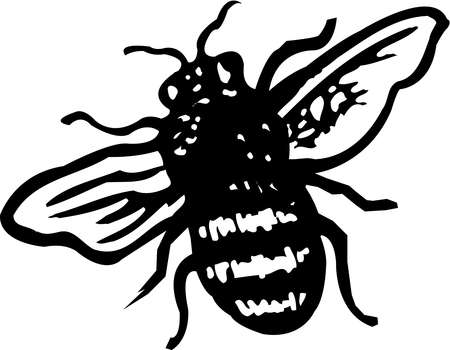 A black and white illustration of a bee