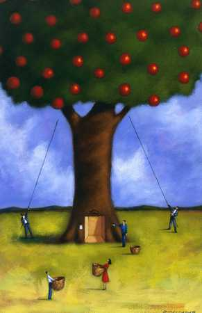 People Gathering Apple From Tree