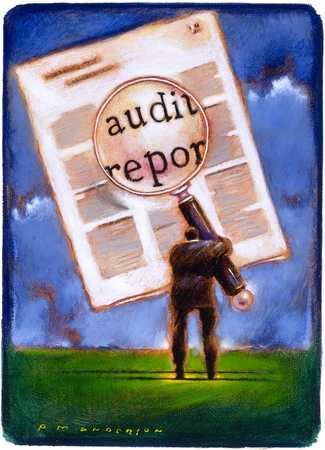 Man With Audit Report