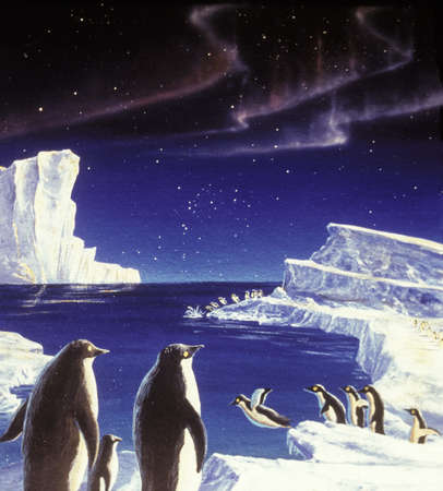 Illustration of penguins diving from ice cliffs with the aurora australis in the night sky.