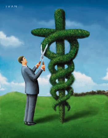 Doctor trims shrub shaped like caduceus.