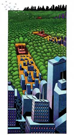 Cities Replacing Forests