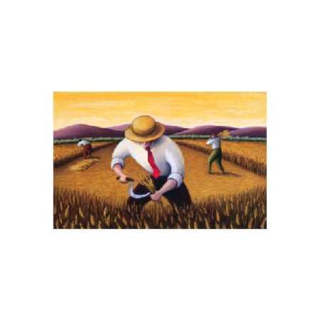 People Harvesting Grain
