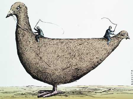 Pigeon Ride