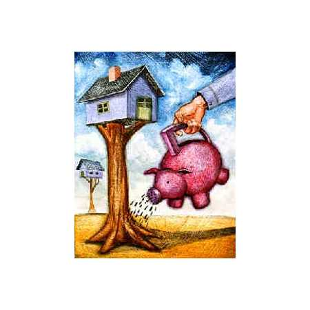 Watering Tree House With Piggy Bank