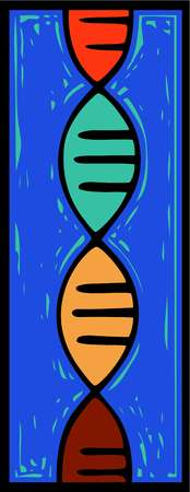 A double helix