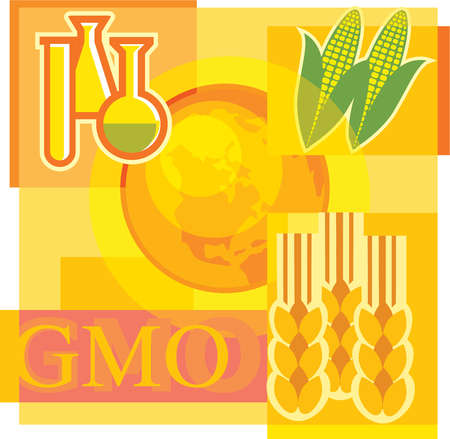 Montage illustration about genetically modified organisms containing corn, beakers, wheat and the world