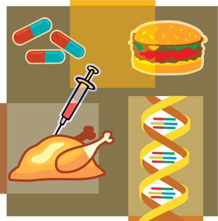 Montage illustration about genetically modified meat containing a turkey, syringe, hamburger, DNA and pills