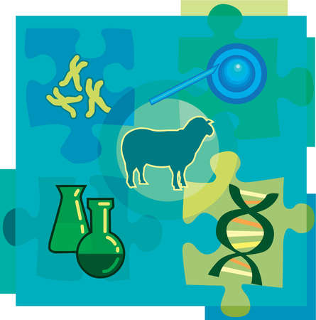 Montage illustration about genetic engineering containing chromosomes, DNA, chemicals, a sheep, and cloning