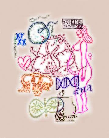 Collage of pregnancy symbols
