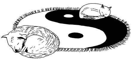Cat and dog laying on yin-yang rug