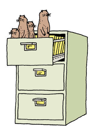 Four groundhogs standing in file cabinet