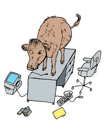 Cow standing on office desk