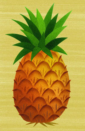 pineapple drawing color. illustration of pineapple drawing color i